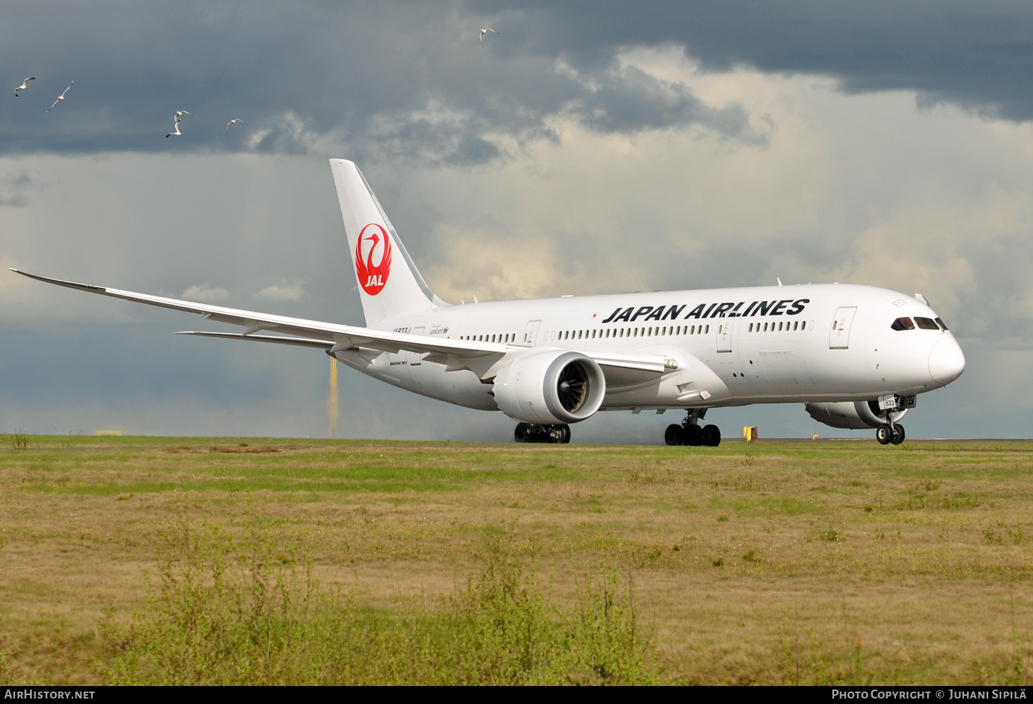 Aircraft Photo of JA833J | Boeing 787-8 Dreamliner | Japan Airlines - JAL | AirHistory.net #186216