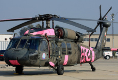 Aircraft Photo of 87-24594 | Sikorsky UH-60A Black Hawk (S-70A) | USA - Army | AirHistory.net